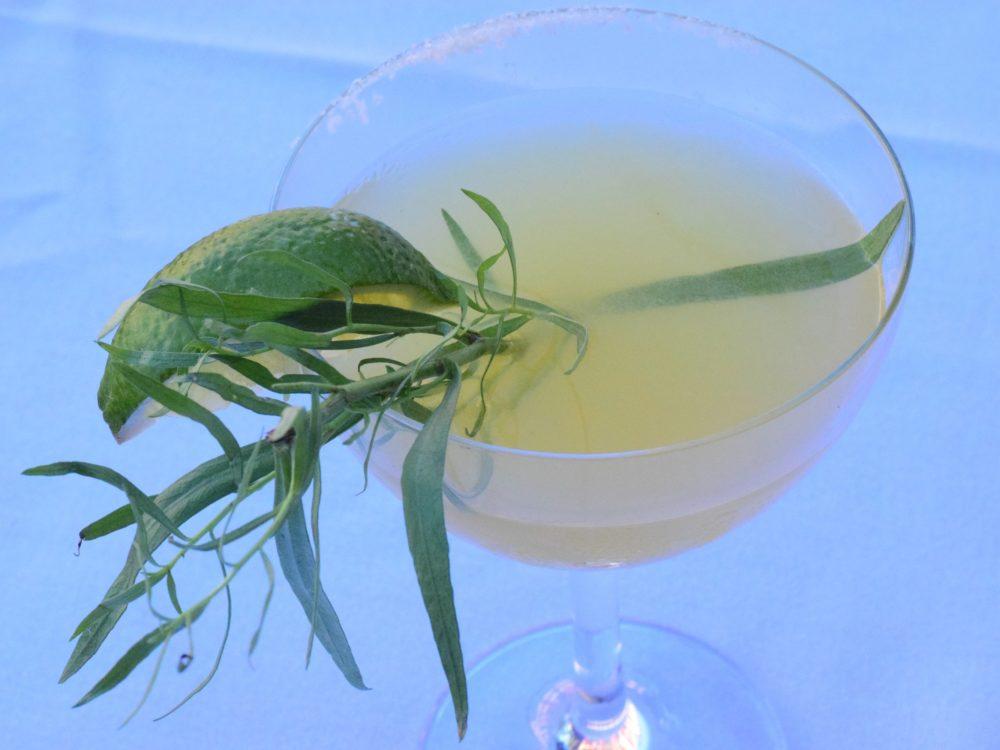 Garden Margarita Cocktail from Trinity Restaurant in New Orleans