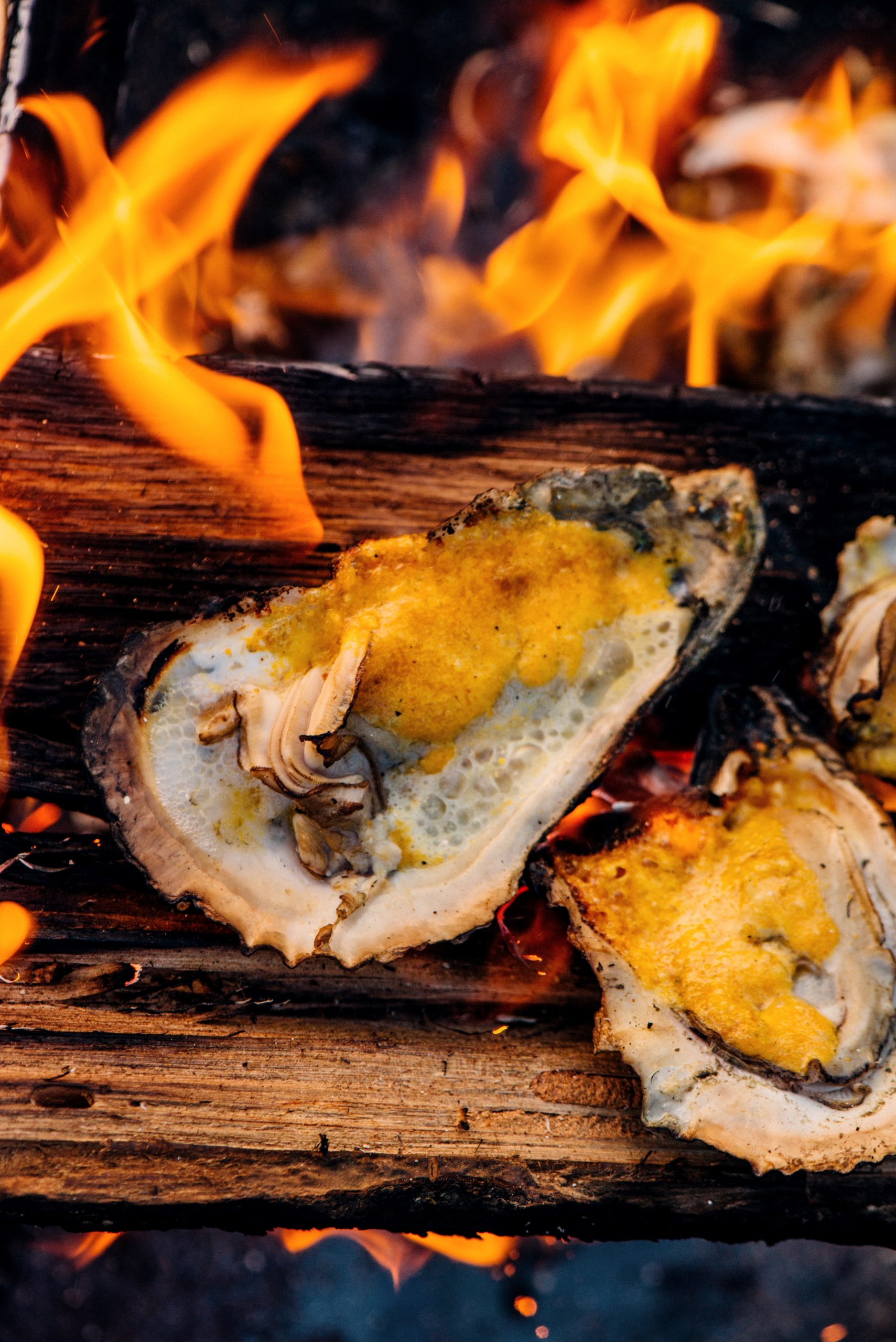 Chef Isaac Toups' Roasted Oysters Recipe